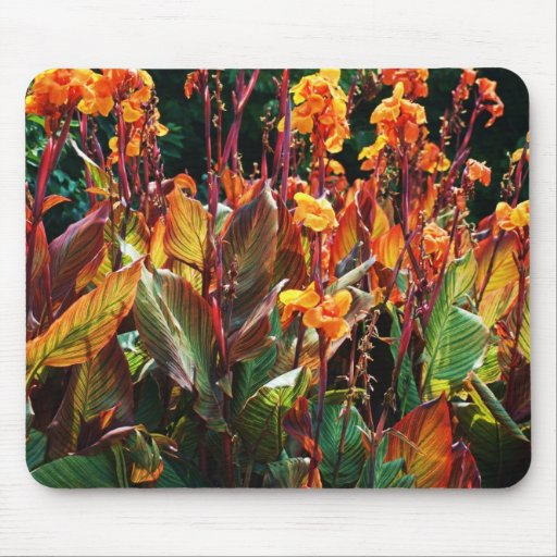 orange and red plants mouse pads