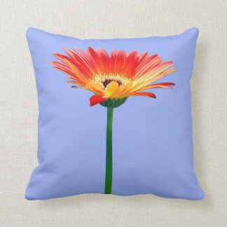 Orange and Yellow Gerbera Daisy Throw Cushion