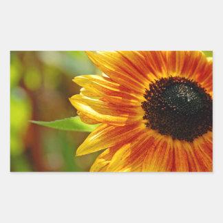 Orange and yellow sunflower blossoms rectangular sticker