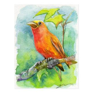 Orange Bird Postcard