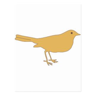 Orange Bird Post Cards