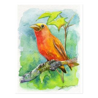 Orange Bird Post Card