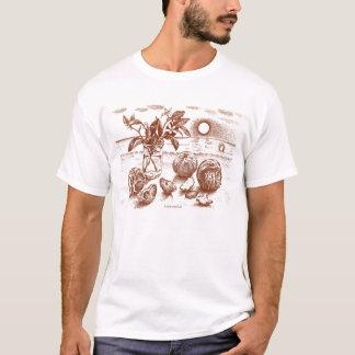 Orange Blossoms Classic T-Shirt
