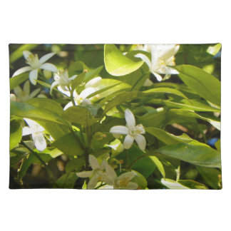 ORANGE BLOSSOMS FROM FLORIDA Placemat