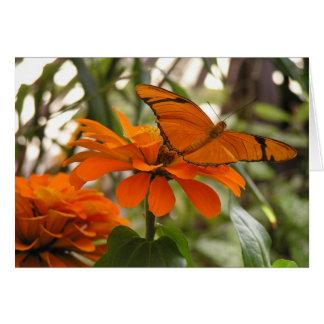 Orange Butterfly Note Card