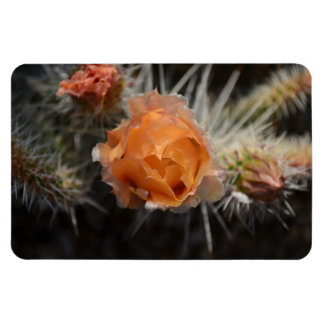Orange Cactus Blossom flexible magnet