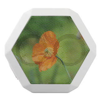 Orange California Poppy White Bluetooth Speaker