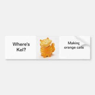 orange-cat.jpg, Where's Kel?, Making orange cats Bumper Sticker