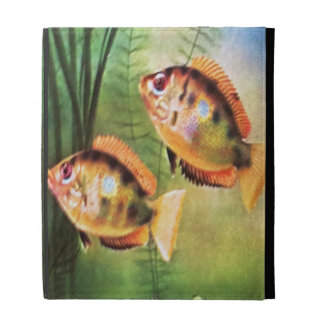 Orange Cichlid iPad Folio Cases