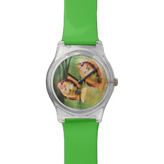 Orange Cichlid Wrist Watch