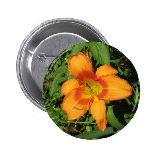 Orange Crush Daylily Buttons