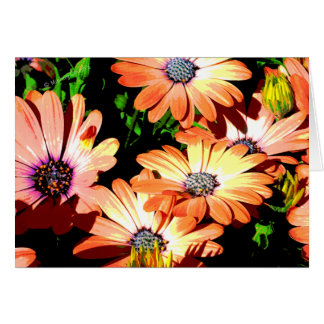 Orange Daisies Card