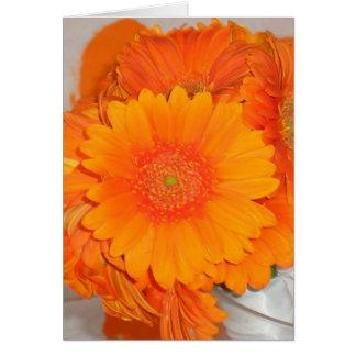 Orange Daisies Greeting Card