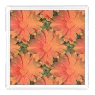 Orange Daisy - Acrylic Tray