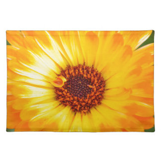 Orange Daisy Placemats