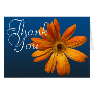 Orange Daisy Colorful Photo Chic Floral Thank You Note Card