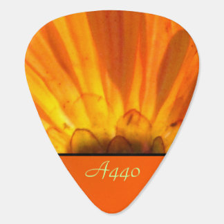 Orange Daisy Flower Pick