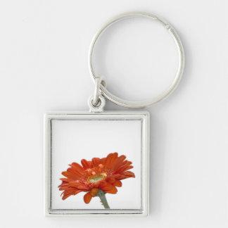 Orange Daisy Gerbera Flower Key Chains