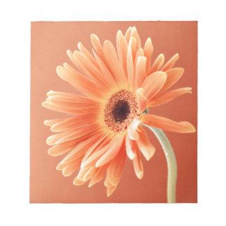 orange daisy memo note pads