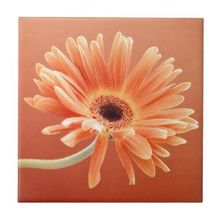 orange daisy small square tile