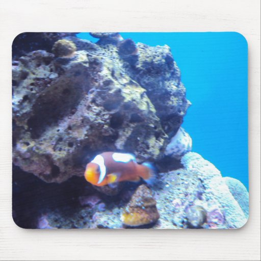 Orange fish mouse pad