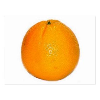 Orange Fruit Post Cards