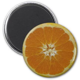 Orange Fruit Slice Magnet