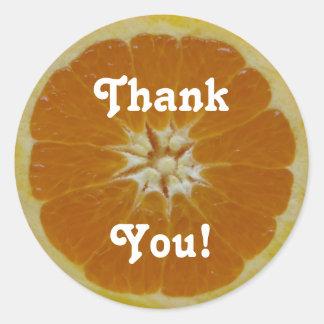 Orange Fruit Slice, Thank, You! Classic Round Sticker