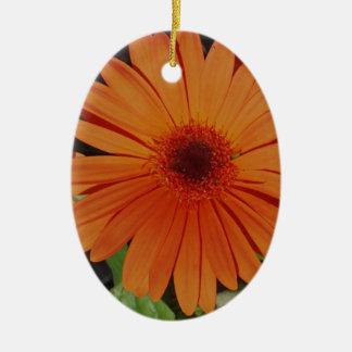 Orange Gerber gerbera Daisy daisie Ceramic Oval Decoration
