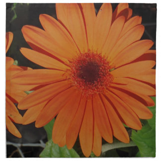 Orange Gerber gerbera Daisy daisie Printed Napkin