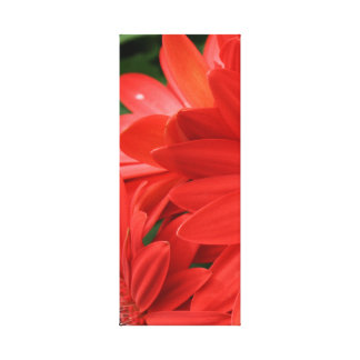orange gerbera daisy 1of 3 stretched canvas prints