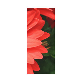 orange gerbera daisy 3 of 3 canvas print