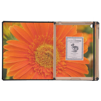 Orange Gerbera Daisy iPad Case