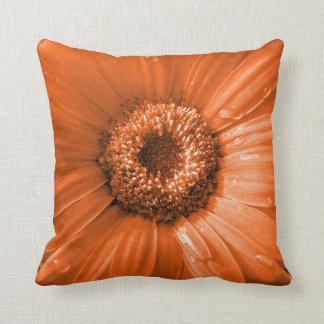 Orange Gerbera Daisy Floral Cushions