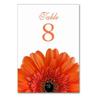 Orange Gerbera Daisy White Wedding Table Card