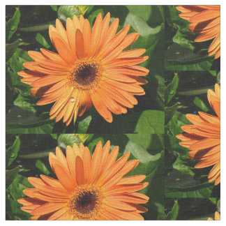 Orange Gerbera Daisy with water droplet Fabric