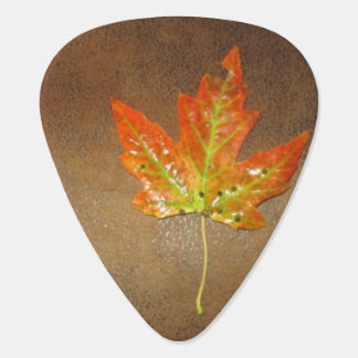 Orange Maple Leaf Guitar Pick