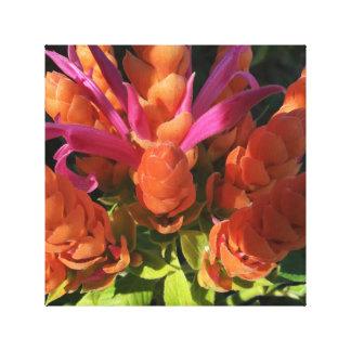 Orange & Pink Flower Canvas Print