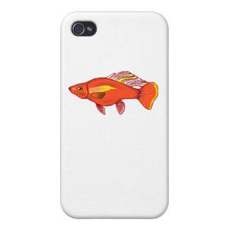 Orange Platy Fish Case For iPhone 4
