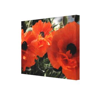 Orange Poppies Floral Canvas Print