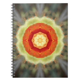 Orange Prickly Pear Blossom Spiral Note Book