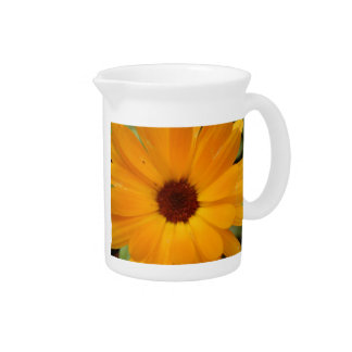 Orange Rain Daisy Pitcher
