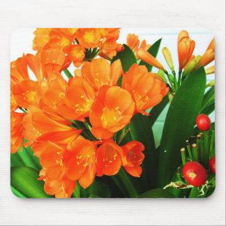 orange red mouse pad