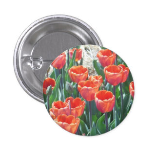 Orange-Red Tulips Button