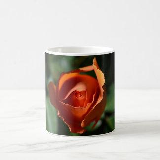 Orange Rose Blossom Coffee Cup Mugs