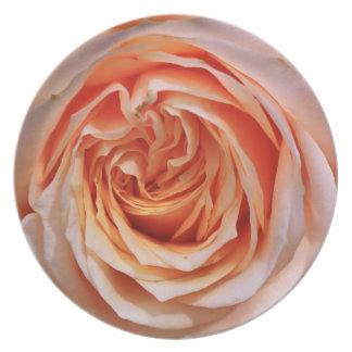 Orange rose blossom party plates