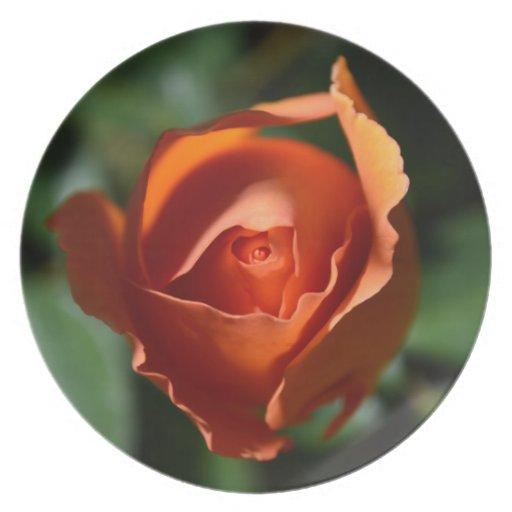 Orange Rose Blossom Plate