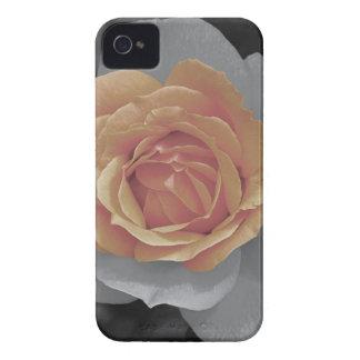 Orange rose blossoms print iPhone 4 case