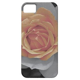 Orange rose blossoms print iPhone 5 cases