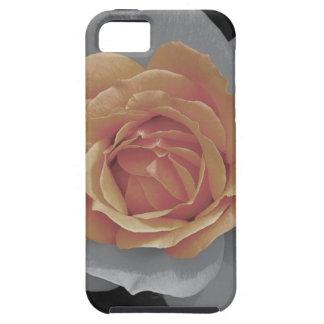 Orange rose blossoms print iPhone 5/5S case
